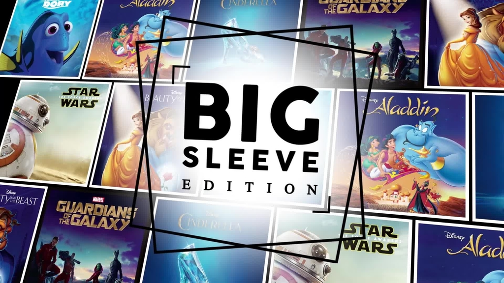 Disney Big Sleeve