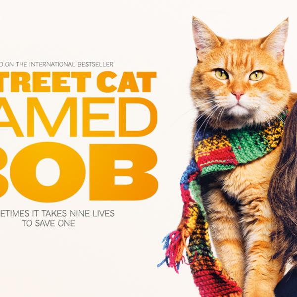 eXPD8's Holly meets Street Cat Bob