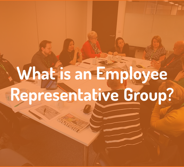 What is an Employee Representative Group?